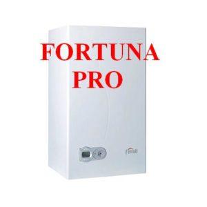 FORTUNA PRO